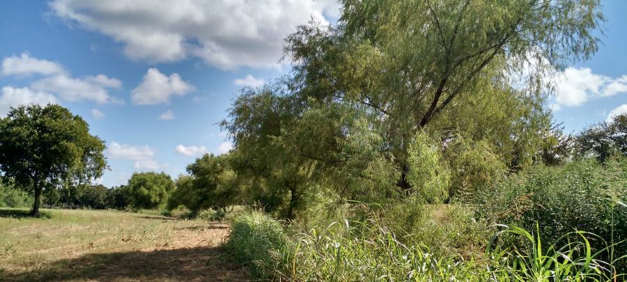 Escondido Creek Parkway site photo